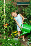 Cute little girl watering tomato and flowers in the backyard Royalty Free Stock Photo
