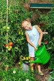 Cute little girl watering tomato and flowers in the backyard Royalty Free Stock Photography