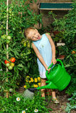 Cute little girl watering tomato and flowers in the backyard Stock Photo