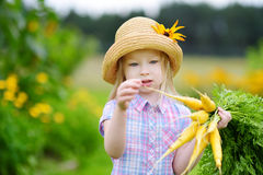 Cute little girl wearing straw hat holding a bunch of fresh organic carrots Stock Photography