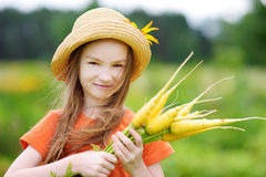 Cute little girl wearing straw hat holding a bunch of fresh organic carrots Royalty Free Stock Image