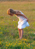 Cute little girl in white dress on the meadow Stock Photography