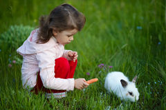 Cute little girl with white rabbit Royalty Free Stock Photography