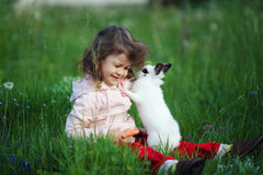 Cute little girl with white rabbit Royalty Free Stock Photos