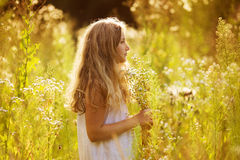Cute little girl among white wildflowers Stock Image