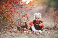 Free Cute Little Girl With A Basket Of Red Apples In The Fall In The Park Stock Images - 130736984