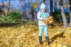 Cute little girl with yellow maple leaves outdoors Royalty Free Stock Photo