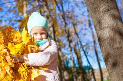 Cute little girl with yellow maple leaves outdoors Royalty Free Stock Image
