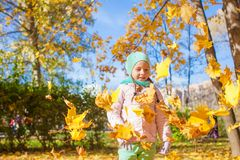 Cute little girl with yellow maple leaves outdoors Royalty Free Stock Images