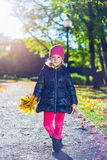Cute little girl with yellow maple leaves walking in park Stock Images