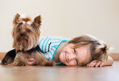 Cute little girl with yorkshire terrier indoor Royalty Free Stock Photos