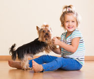 Cute little girl with yorkshire terrier indoor Royalty Free Stock Photography