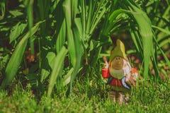Cute gnome garden model royalty free stock photo