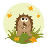Cute little hedgehog stock illustration