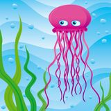 Cute little jellyfish. In the sea Stock Photo