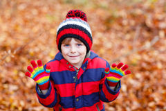 Cute little kid boy on autumn leaves background in park. Stock Photography