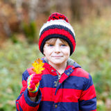 Cute little kid boy on autumn leaves background in park. Stock Photos