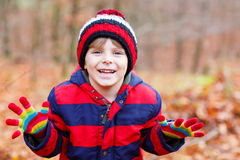 Cute little kid boy on autumn leaves background in park. Stock Images