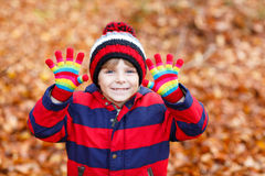 Cute little kid boy on autumn leaves background in Royalty Free Stock Photos