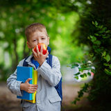 Cute little kid boy with books and backpack on green nature background. Square. Stock Images