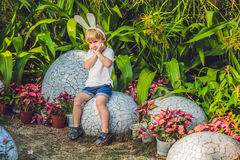 Cute little kid boy with bunny ears having fun with traditional Easter eggs hunt, outdoors. Celebrating Easter holiday. Toddler fi Royalty Free Stock Image