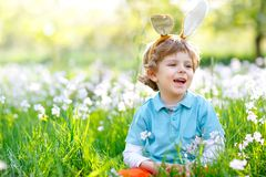 Cute little kid boy with Easter bunny ears celebrating traditional feast. Happy child smiling on warm sunny day. Family royalty free stock photography