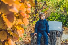 Cute little kid boy enjoying autumn day. Preschool child in colo Royalty Free Stock Photography