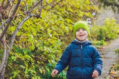 Cute little kid boy enjoying autumn day. Preschool child in colo Royalty Free Stock Image