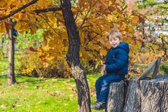 Cute little kid boy enjoying autumn day. Preschool child in colo stock images