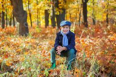 Free Cute Little Kid Boy Enjoying In Autumn Park. Royalty Free Stock Image - 103309066