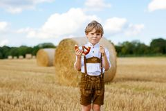 Cute little kid boy in traditional Bavarian costume in wheat field Stock Image