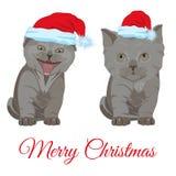 Cute little kittens in Santa hats vector flat illustration stock illustration