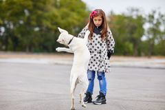 Beautiful young girl playing with dog outdoors. Pet concept. A cute little lady with doggie playing on the street. Having fun together outdoors on the nature Stock Photography