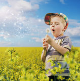 Cute little man having fun with dandelions Royalty Free Stock Photography