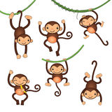 Cute little monkeys characters Stock Photos
