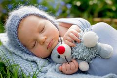 Cute little newborn baby boy, sleeping, holding cute little mous. Cute little newborn baby boy, sleeping wrapped in gray wrap, holding cute little mouse toy Royalty Free Stock Image