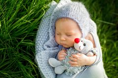 Cute little newborn baby boy, sleeping, holding cute little mous. Cute little newborn baby boy, sleeping wrapped in gray wrap, holding cute little mouse toy Stock Photography
