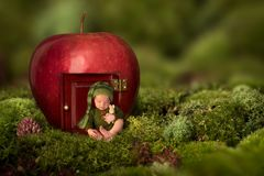 Newbon baby in front of apple house stock photography