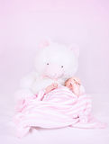 Cute little newborn girl Royalty Free Stock Image