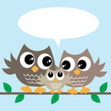 Cute little owl family Stock Images