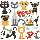 Cute little pets cats and dogs Stock Photography