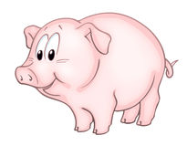Cute little pig Stock Images