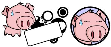 Cute Little pig big head expression copyspace Royalty Free Stock Photo