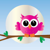A cute little pink owl Stock Images