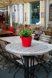Cute little pot plant on outdoor table. Royalty Free Stock Photos