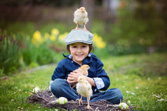 Cute little preschool child, boy, playing with easter eggs and c. Hicks in spring blooming garden, sitting in handmade nest, easter happiness childhood concept Royalty Free Stock Photo