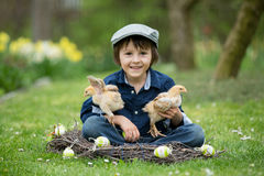 Cute little preschool child, boy, playing with easter eggs and c. Hicks in spring blooming garden, sitting in handmade nest, easter happiness childhood concept Royalty Free Stock Images
