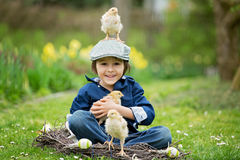 Cute little preschool child, boy, playing with easter eggs and c. Hicks in spring blooming garden, sitting in handmade nest, easter happiness childhood concept Stock Photography