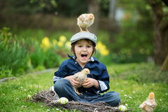 Cute little preschool child, boy, playing with easter eggs and c. Hicks in spring blooming garden, sitting in handmade nest, easter happiness childhood concept Royalty Free Stock Photos