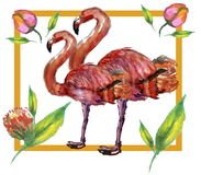 Cute Little Princess Abstract Background with Pink Flamingo Illustration. FLOWER Royalty Free Stock Image